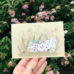 Dalmatian meets little snail